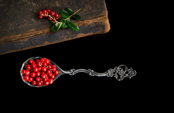 Lingonberry: The Scarlet Arctic Treasure
